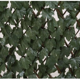 CELOSIA EXTENSIBLE CON HOJAS DECORATIVAS ( 1x2 metros)